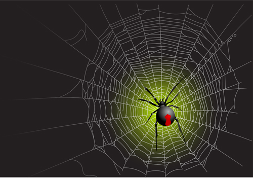 Web Spider Vector Vector Spider Web Design