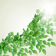 Link toBright green leaves with air bubble vector background 02