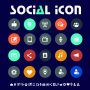 Delicate social icons vector graphics