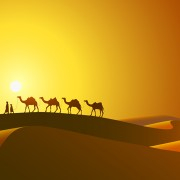 Link toDesert and camel background vector