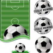 Link toFootball field with football labels vector 02