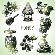 Link toHand drawn honey elements vector icons
