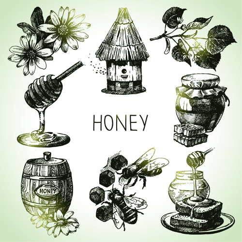 Hand drawn honey elements vector icons