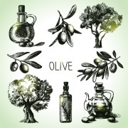 Link toHand drawn olive elements vector icons