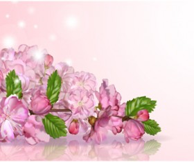 Huge collection of beautiful flower vector graphics 01