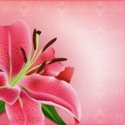 Link toHuge collection of beautiful flower vector graphics 03