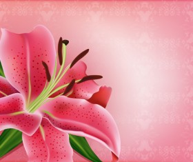 Huge collection of beautiful flower vector graphics 03