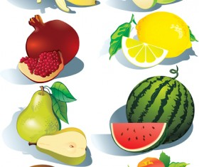 Realistic fruits icons vector material 01