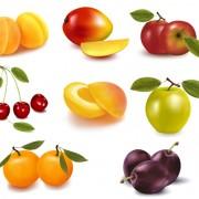 Link toRealistic fruits icons vector material 02
