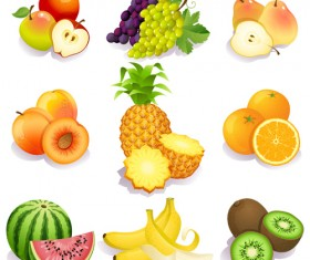 Realistic fruits icons vector material 03