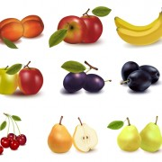 Link toRealistic fruits icons vector material 04