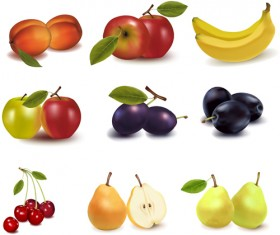 Realistic fruits icons vector material 04