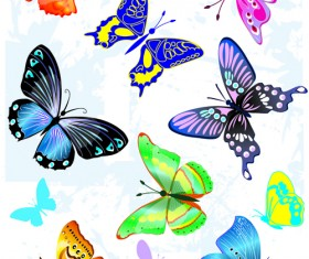 Sorts of butterflies clip art vector material 04