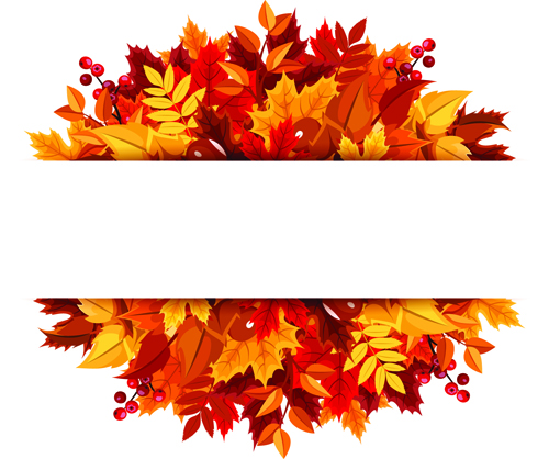 Beautiful autumn leaves vector background graphics 02