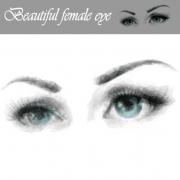 Link toBeautiful female eye vector graphics