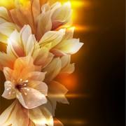 Link toFantasy flowers shiny vector background 05