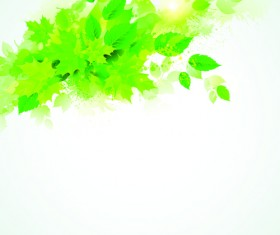 Green leaves with grunge background graphics vector 01