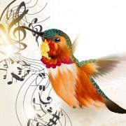 Link toHand drawn hummingbird vector material 01