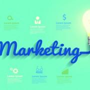 Link toLight bulb business idea vector template 02