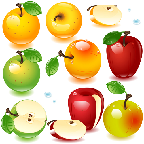 Realistic fruits and berry design vector 02