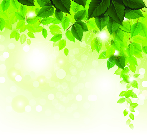 refreshing green leaves background vector 01 free download