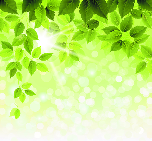 Refreshing Green Leaves Background Vector 03 Vector