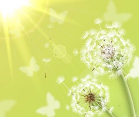 Shiny dandelion vector backgrounds material 04