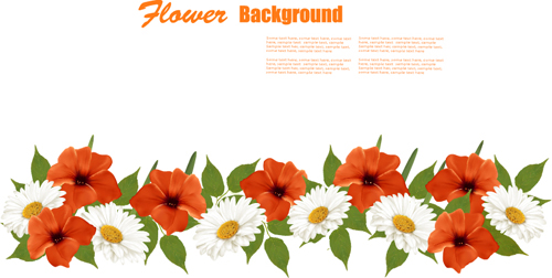 Summer white and orange flowers background vector 01