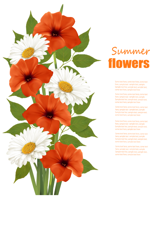 Summer white and orange flowers background vector 02