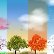 Link toTree with four seasons vector material 04