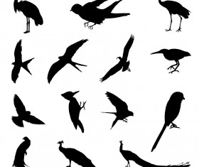 Various birds silhouettes vector set 01