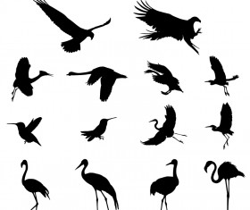 Various birds silhouettes vector set 02