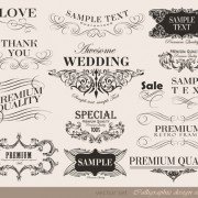 Link toVector set of calligraphic vintage elements 03