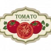 Link toVintage tomato labels design vector