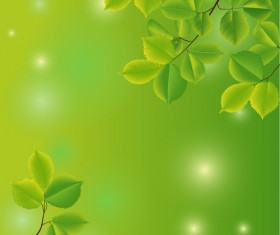 Branches and leaves with green background vector 01