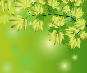Branches and leaves with green background vector 02
