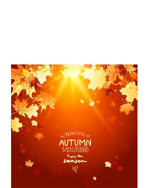 Bright autumn leaf backgrounds vector set 04