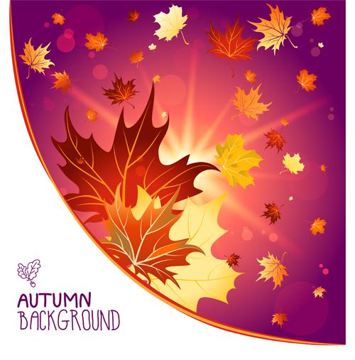 Bright autumn leaf backgrounds vector set 06