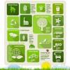 Business Infographic creative design 1660
