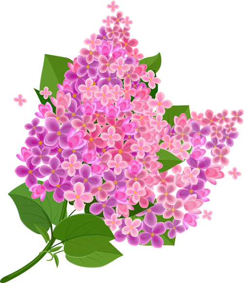 Gree leaf with pink flower background vector 01