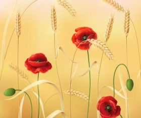 Poppy with wheat design vector background 01
