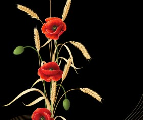 Poppy with wheat design vector background 02