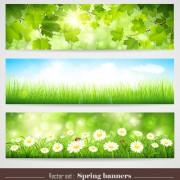 Link toSpring natural banners vector set 01