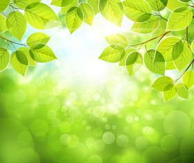 Summer green leaves with sunlight vector background 02