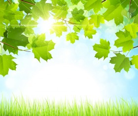 Summer green leaves with sunlight vector background 03
