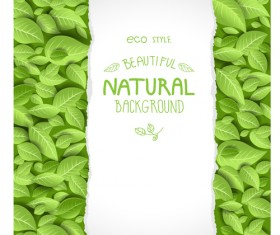 Beautiful green leaves natural background vector 01