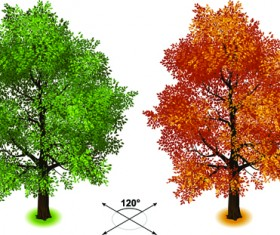 Creative isometric trees design vector 04