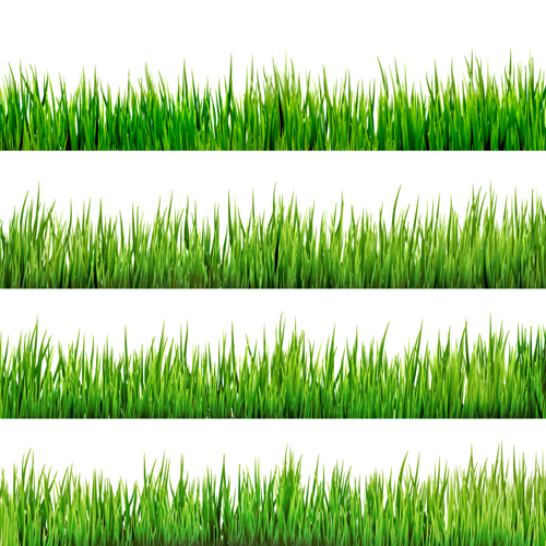 Realistic grass borders design vector 02 vector frames for Designing with grasses