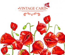 Retro red poppies cards vector graphics 01