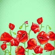 Link toRetro red poppies cards vector graphics 05